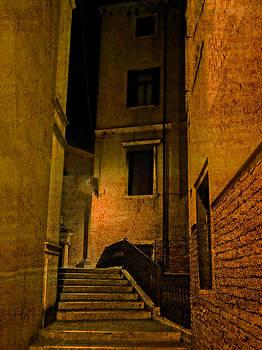 Hidden Venice  by Bishopston Fine Art