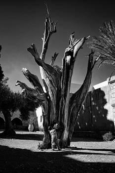 Hide and seek by Spyros Papaspyropoulos