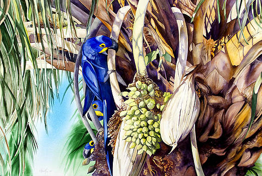 Hide-n-Seek Hyacinths by Kitty Harvill