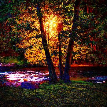 Hiding River Lantern by Yevgeni Kacnelson