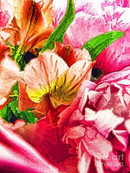 Anne Ferguson - High Color Petals
