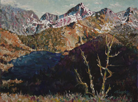 High Country Serenity by C Michael French