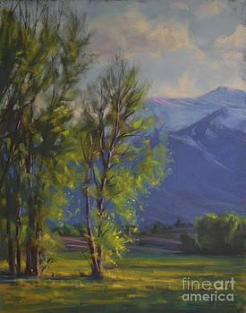 High Country Spring by Joe Mancuso