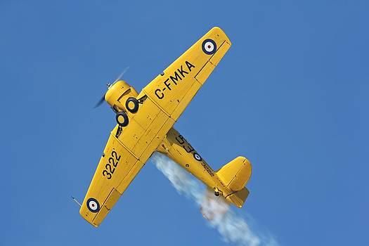 High Flight by Jonathan Edwards - Corvidae Studio Photos