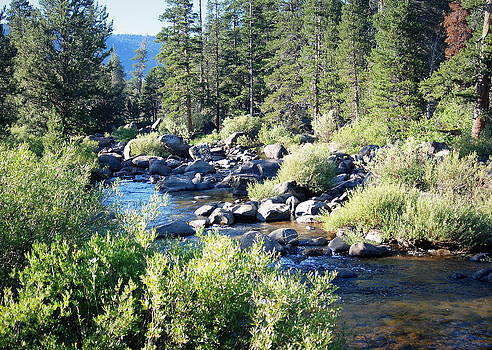 High Mt River by Vicki Coover