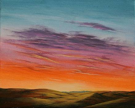 High Plains Sunset by J W Kelly