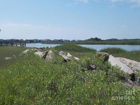 High tide in the marsh by Valerie Shaffer