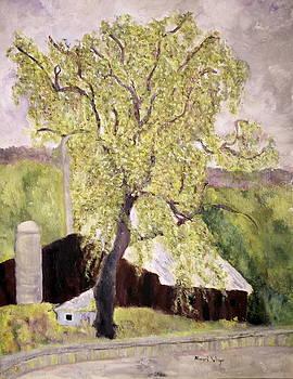 Highway Barn by Aleezah Selinger