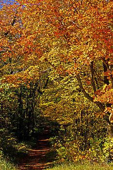 Hike by Jann Kline