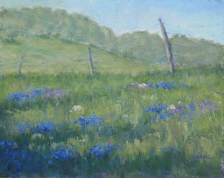 Hill Country Fence by Michael Gillespie