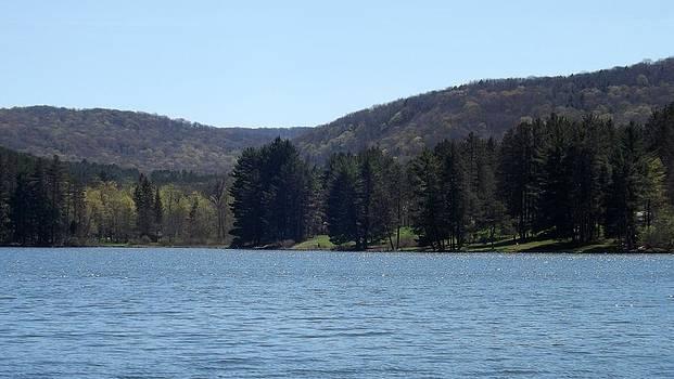 Hill Side lake by Michael Sokalski