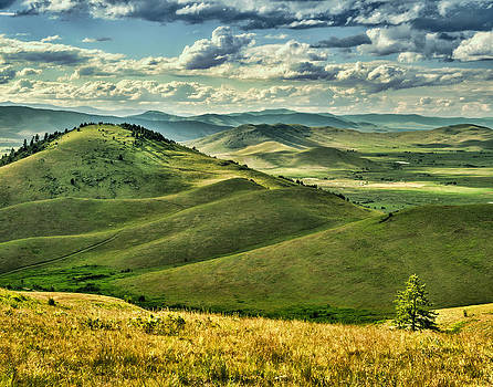 Hills of the National Bison Range in Montana by Donna Caplinger