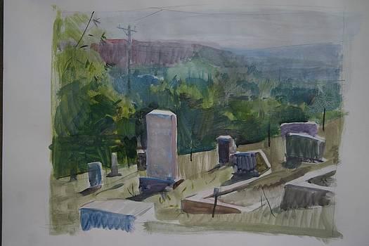 Hillside Grave by Kevin Weckbach
