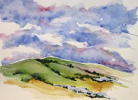 Hillside in Bloom by Renee Goularte