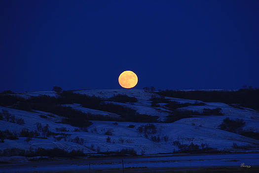 Hilltop Moon by Andrea Lawrence