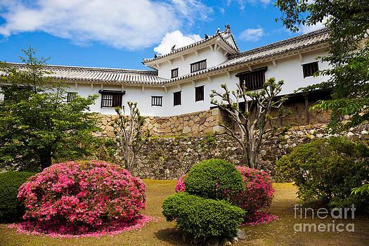 Himeji castle Japan by Fototrav Print