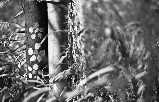 Hippy Flowers by Azriel Knight