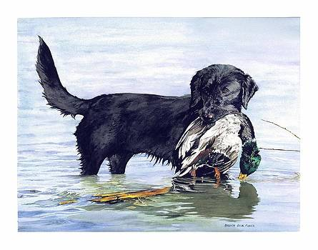 His First Catch by Brenda Beck Fisher