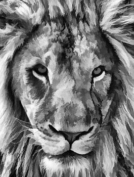 His Majesty by Jeff R Clow