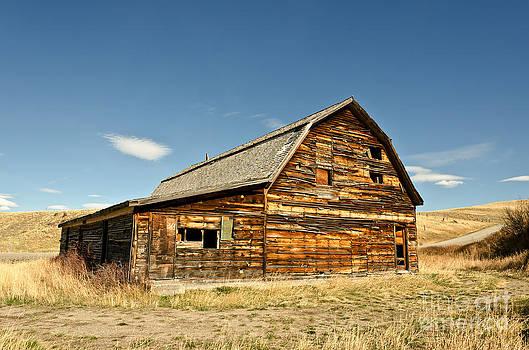 Historic Community Hall by Sue Smith