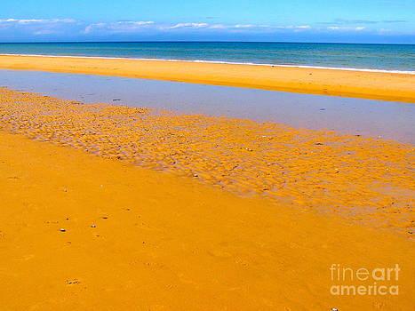 Carolyn Kami Loughlin - Historic Sands