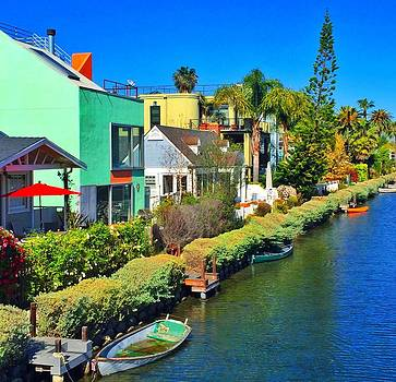 Historic Venice Canals by Caroline Lomeli