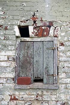 Leslie Cruz - Historic Window