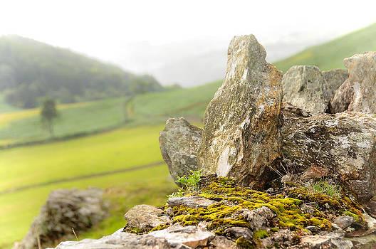 Jenny Rainbow - History and Nature. Wicklow. Ireland