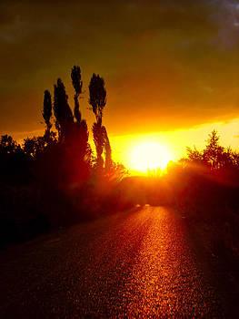 Hit the road Jack by Zafer Gurel