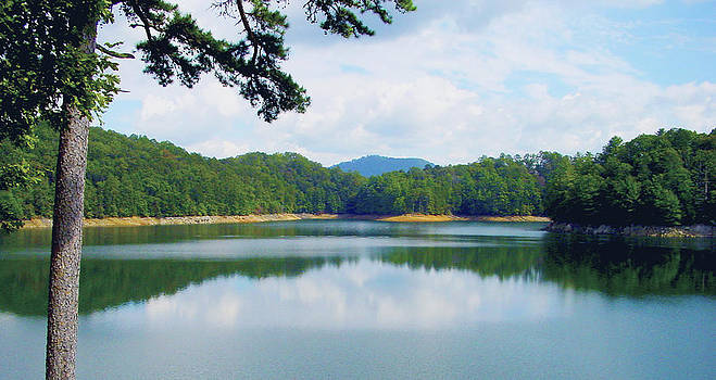Hiwassee Lake by Robert J Andler