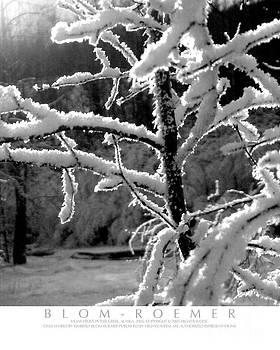 Kimberly Blom-Roemer - Hoar Frost on Tree