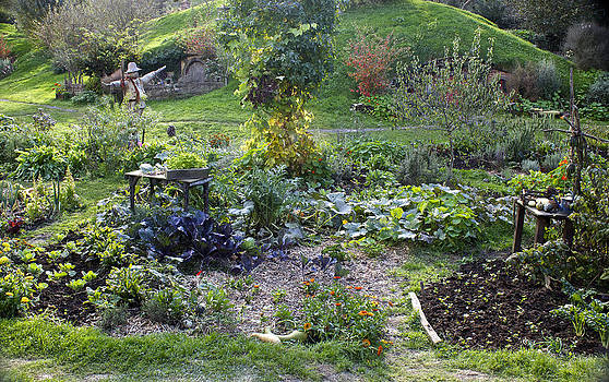 Venetia Featherstone-Witty - Hobbit Garden in Bag End