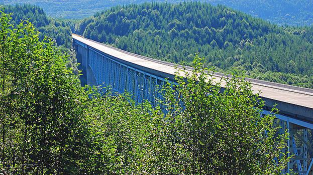 Connie Fox - Hoffstadt Creek Bridge To Mount St. Helens