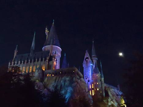 Hogwarts Castle at Night by Kathy Long