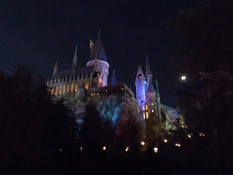 Hogwarts Castle in Lights by Kathy Long