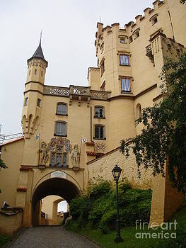 Hohenschwangau Castle by Danielle Groenen