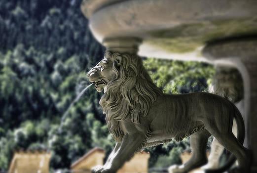 Hohenschwangau Lion by Joanna Madloch