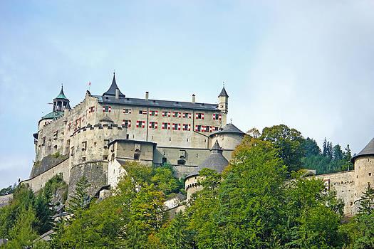 Hohenwerfen Castle by Borislav Marinic