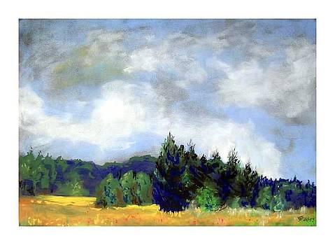 Hohes Venn by Fritz Engelhardt