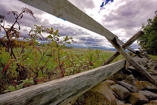 Holding the fenceline by John Holloway