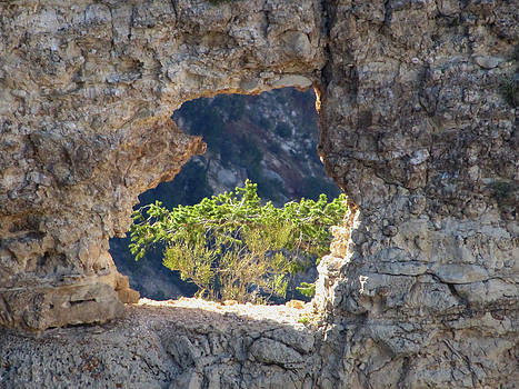 Hole in the Wall by Barbara Chachibaya