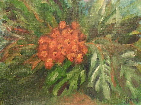 Holiday Floral by Steve Jorde