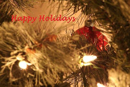 Holiday greetings by David S Reynolds