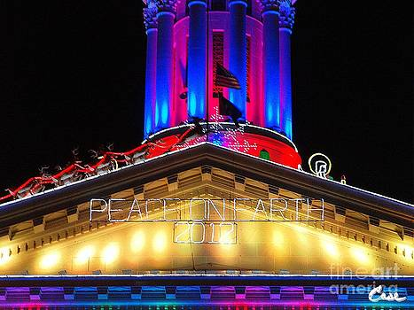 Feile Case - Holiday Lights 2012 Denver City and County Building E2