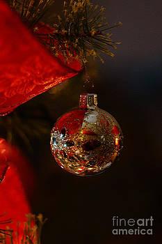 Linda Shafer - Holiday Season
