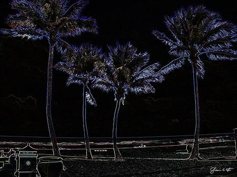Hollywood Palms In Glowing Edges by Shawn Lyte