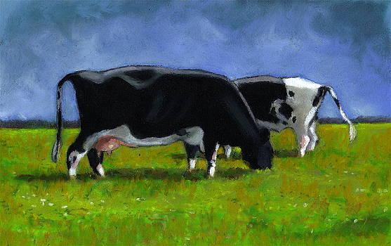 Joyce Geleynse - Holstein Cows Grazing
