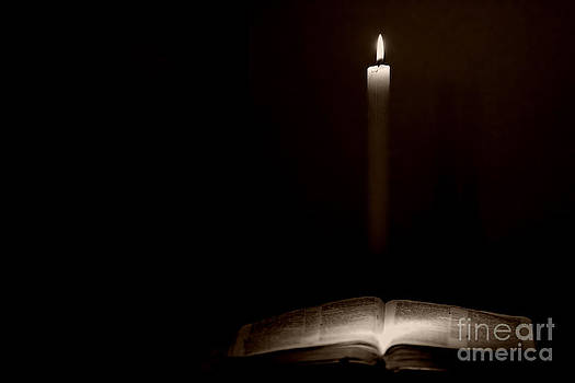 Holy Bible Illuminated by Lincoln Rogers