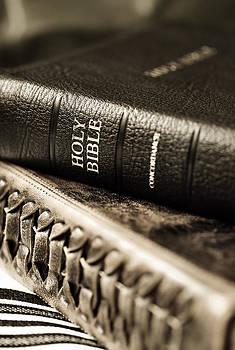 Holy Bible by Sergei Zinovjev