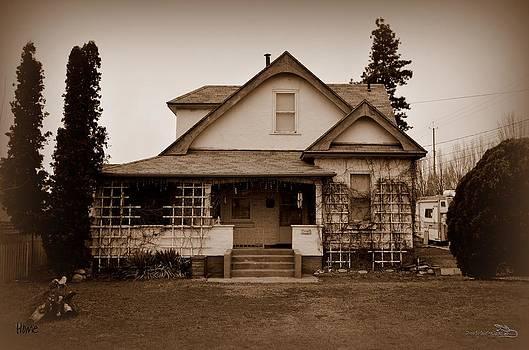 Guy Hoffman - Home